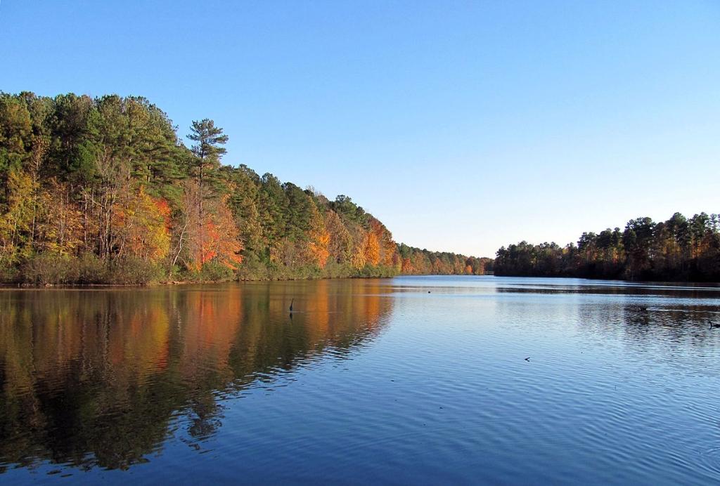 Lake Lynn Raleigh