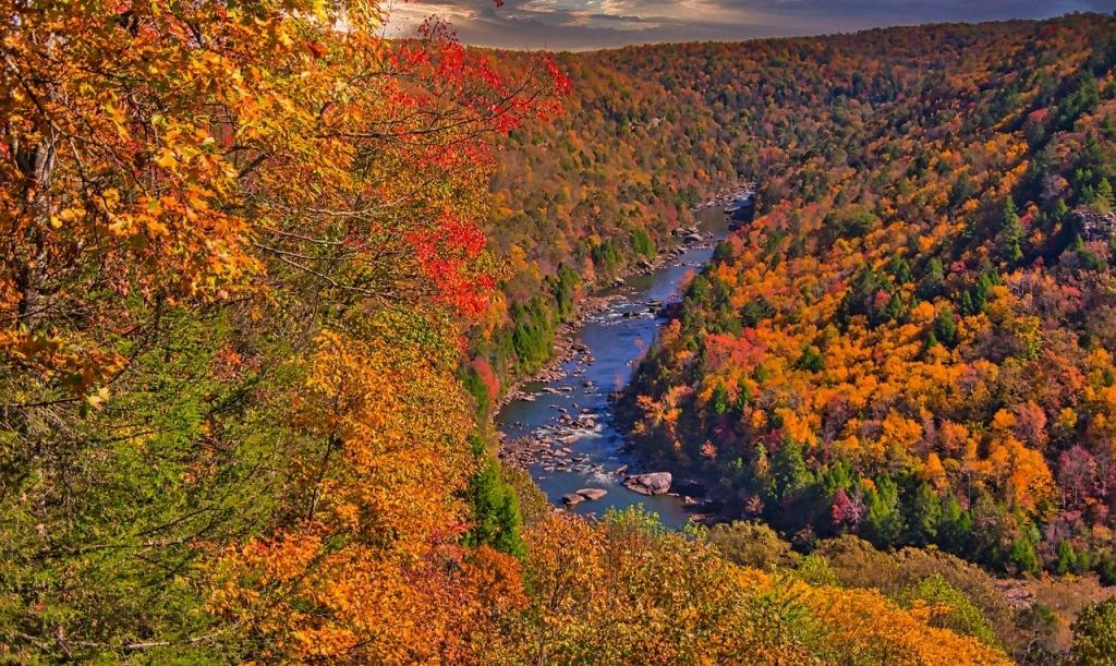 New River fall foliage